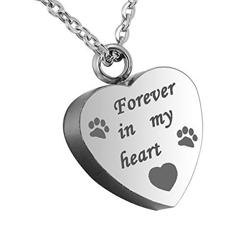 HooAMI para siempre en mi corazón mascota canina cremacion urna collar