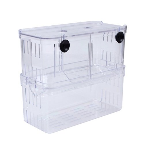 EFORCAR 1 stücke Fischzucht Boxen Doppel Guppies Schlüpfen Inkubator Isolation Acryl Mini Aquarium Tanks Durable (Groß)