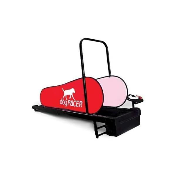 dogPACER Minipacer Treadmill 1