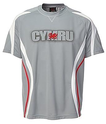 COOLDRY WELSH GREY SPORTS T-SHIRT (Cymru) S-4XL Football, Rugby, Gym Top by Manav UK
