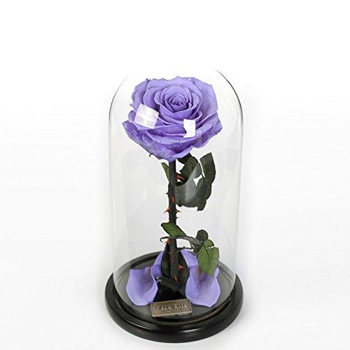 Boîte De Cadeau Fleur Immortelle De Roses/Verre éternelle Jardinière-C