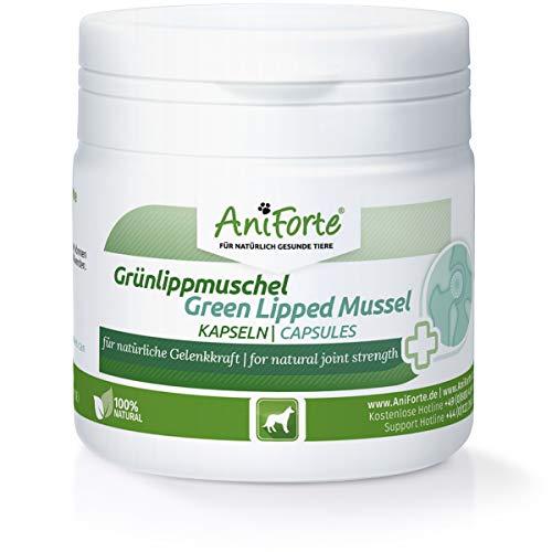AniForte Grünlippmuschel-Kapseln 100 Stück für Hunde - Gelenk-Tabletten, 100% Grünlippmuschel-Extrakt Perna Canaliculus, Grünlippenmuschel