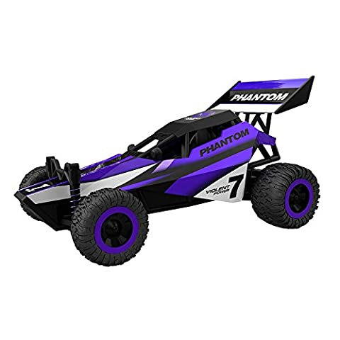 Gizmovine RC Race Car Scale 1: 32- High Speed Purple Buggy- Fast, Drift, Super Control, Interior and Exterior (purple)
