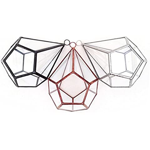 Goccia piccolo con Loop geometrico vetro terrario
