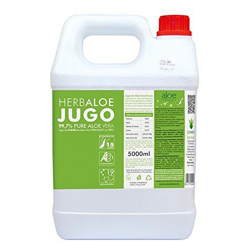 Preisvergleich Produktbild Aloe Vera Saft HERBALOE 99, 7% pur 5000 ml von SAVIMAX Fuerteventura …