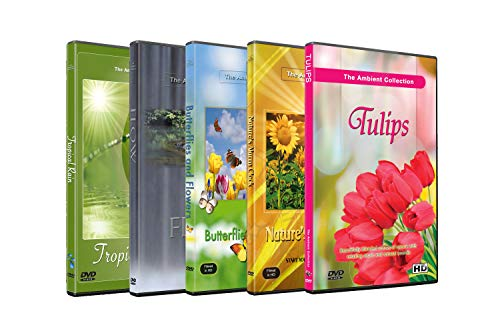 5 Disc Set DVD Combo Pack - Butterfly on Flower, Tulip Garden, Tropical Rain - Relaxation HD Videos with Nature Sounds or Music (Rain Man-dvd)