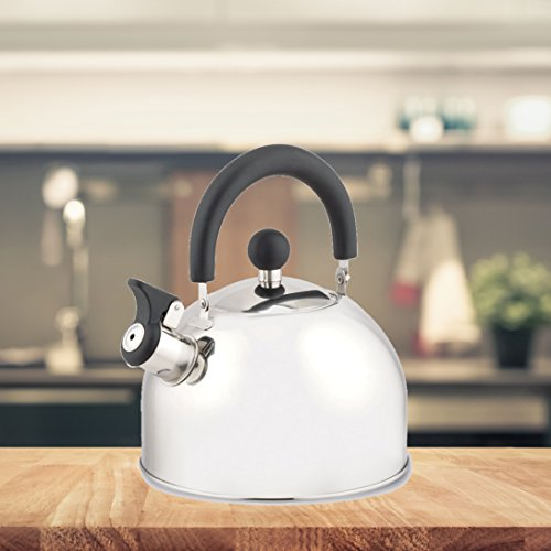 FRX Retro Design 2,5L Flötenkessel Edelstahloptik Wasserkessel mit Pfeife Teekessel Wasserkocher Teekocher (2,5 Liter)