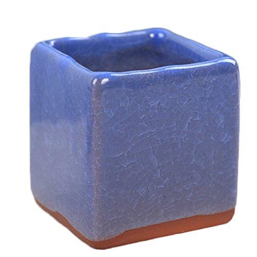 outflower Horticulture ornementale Pot de céramique pots de couleurs la glace resquebrajado Pot Pot carré 5.5 * 5.3 CM vert modèles : 3 5.5*5.3cm Bleu 2
