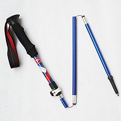 11f522b862a 5 Bâtons de marche nordiques 125cm Durable simple Tungstène Alliage d  aluminium Camping   Randonnée