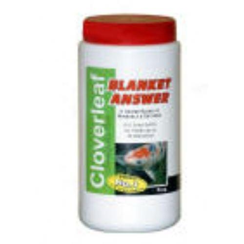 Trifoglio Blanket answer alghe Trattamento