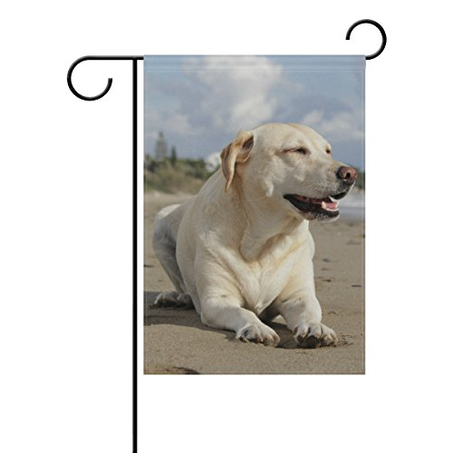 Blau Viper Beach Beige Labrador Retriever Hund Garten Flagge Banner 30,5x 45,7cm Dekorative Garten Flagge für Outdoor Rasen und Garten Home Décor Doppelseitig 12x18(in) Multi (Hund Rasen Plus)