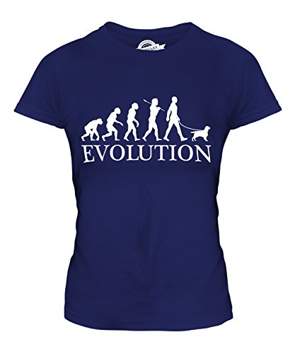 Candymix - English Toy Spaniel Evolution Of Man - Ladies Fitted T Shirt Top T-Shirt