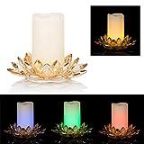 DbKW LED Kerze & Kristallglashalter, 15 cm Höhe Ø 20,5, 6 Stunden Timer, Warm-weiß & Farbwechsel (Champagner)