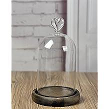 Campana de cristal con bandeja de madera, diámetro de 10cmx18cm