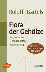 Flora der Gehölze: Bestimmung, Eigenschaften und Verwendung