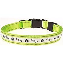 Collar de seguridad con led para perro, ajustable con luz regulable, Verde, Large
