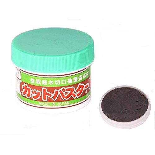 Bonsai - Wundpaste aus Japan 160 gr. 61045