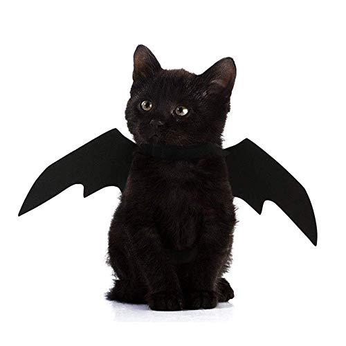 Dorothy Pet Kostüm - Anjing Haustierkostüm für Hunde und Katzen,