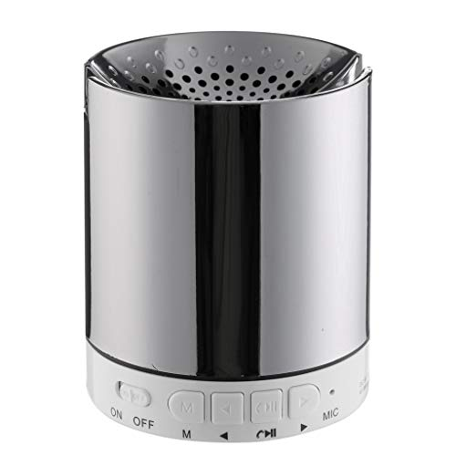 Haludock Tragbarer, ultraleichter Mini-Bluetooth-Lautsprecher mit USB-Radio