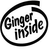 Best Bumper Stickers - Ginger Inside Funny Bumper Sticker Car Van Bike Review