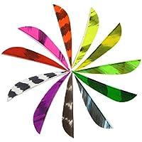 ZSHJG 50 pcs Plumas de Flecha 2 Pulgadas Natural Fletches Turquía Fletching ala Derecha para Bricolaje Flechas Ballesta (Color8)