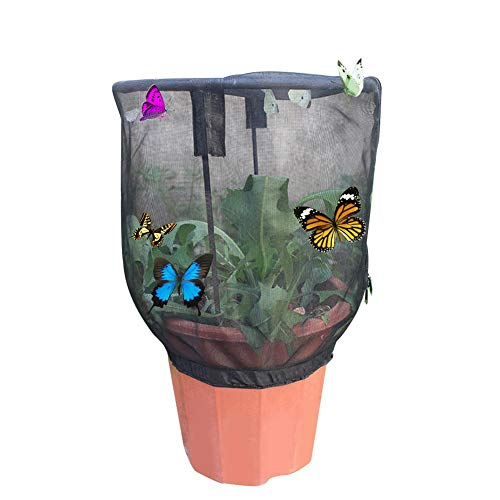 Hualieli Butterfly Habitat Cage Faltbare Insekten Pflanzenkäfig Garden Insect Net Cage Insect Zierpflanze Sunshade Cage Insect Und Butterfly Habitat Butterfly Feeding