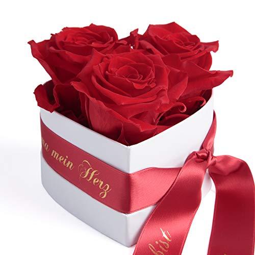ROSEMARIE SCHULZ Heidelberg Rosenbox Muttertag Herzen Blumen Deko 3 Infinity Rosen Satinband Goldschrift Mama Du bist Mein Herz (Rot, 3 Rosen Mama Du bist Mein Herz) - 3 Rote Herzen