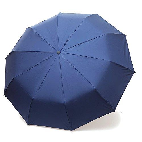 Stanaway® Ombrello/ombrello automatico da viaggio 10-Rib Forte antivento, portatile e leggero per facile trasporto/Auto Aprire e Chiudere con manico ergonomico, compatto ombrello esterni, Blue