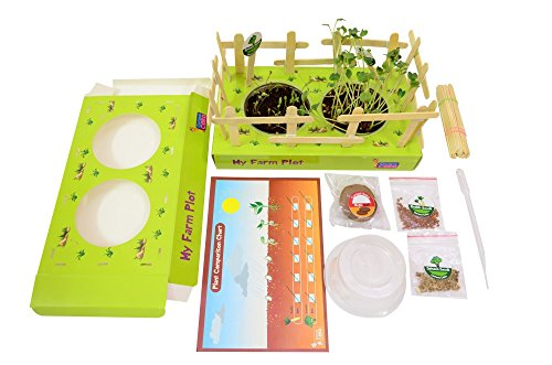 Do it yourself, educational toy, science activity box, gift for kids : Plot A Farm  available at amazon for Rs.275