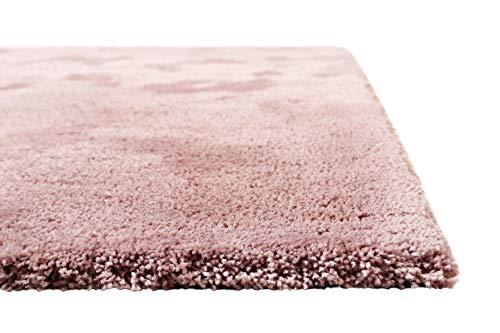 Homie Living I Moderner kuscheliger, weicher, Flauschiger Teppich - Läufer für Wohnzimmer, Flur, Schlafzimmer I Pisa I (160 x 230 cm, Rosa) -