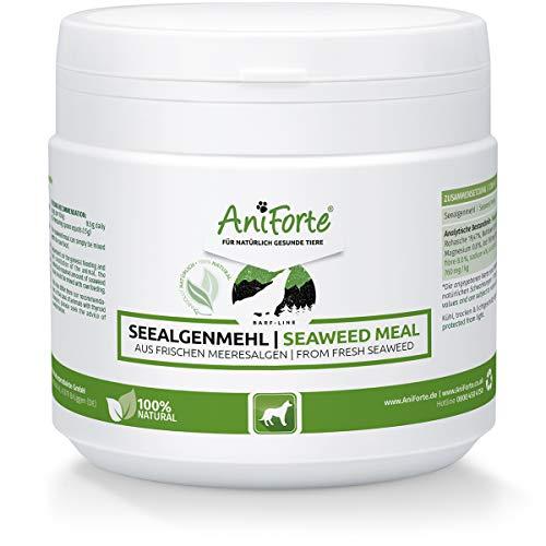 AniForte® B.A.R.F. Line Seealgenmehl - Ascophyllum Nodosum 250 g - Naturprodukt für Hunde