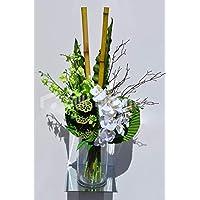 Amazones Abanicos Blancos Flores Plantas Y Flores