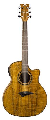 Dean Guitars Exotica series Spalt Maple