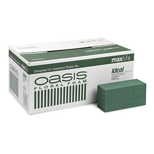 Oasis - Caja Esponja Ideal 20 Ladrillos *c.1