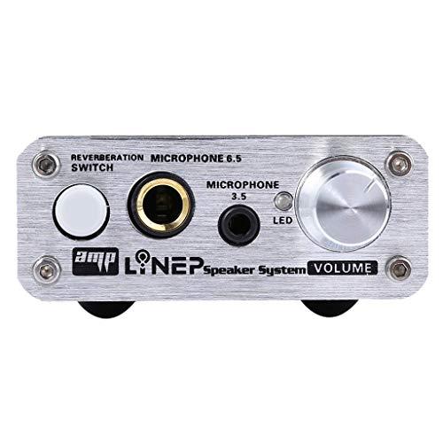 perfk Mikrofonverstärker, Doppel Mikrofon Eingang/Doppel Karaoke/perfekte Geräuschreduzierungsfunktion/Treiber-freies Design