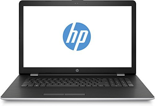 HP 17-bs101ng (17,3 Zoll / HD+) Laptop (Intel Core i5-8250U, 256 GB SSD, 8 GB RAM, AMD Radeon 530 2GB, DVD-RW, Windows 10 Home) schwarz/silber