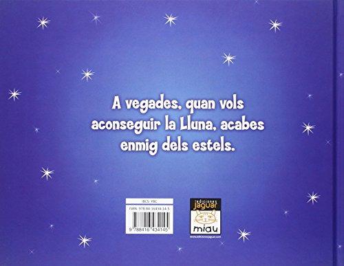 En Santi somiador: Entre els estels