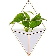 Pot de fleurs mural - Décoration murale géométrique - Pot de fleurs - Vase - Jardin intérieur - Décoration pour plantes succulentes, plantes aériennes, mini-cactus, plantes artificielles, Acrylique, blanc, Small