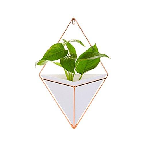 Macetero geométrico para colgar en pared, para jardines interiores, jarrón decorativo, perfecto para plantas suculentas, tillandsias, cactus pequeños o plantas artificiales, acrílico, Blanco, Small