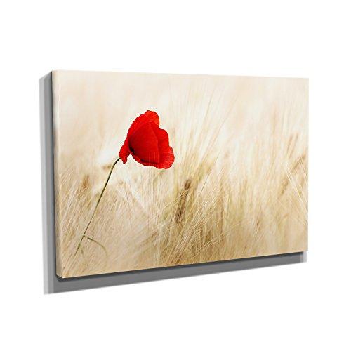 mohnblume-kunstdruck-auf-leinwand-60x90-cm-zum-verschonern-ihrer-wohnung-verschiedene-formate-auf-ec