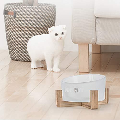 SGLI Glas Schräge Mund Nacken Schüssel Haustier Wasserschüssel Reisschüssel Anti-Kippen Über Auslaufsicherem, Eingedicktem Futternapf Milchglas Hundenapf -