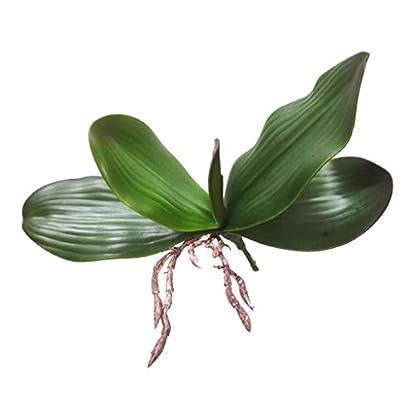 Baoblaze Rama de Hojas Verdes de Orquídea Artificial Decoración de Boda de Casa de Fiesta