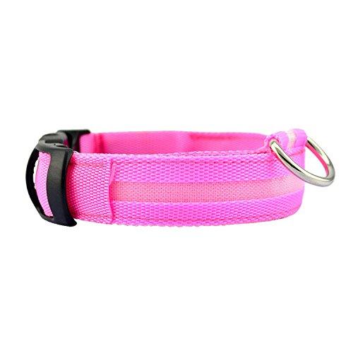 ESYN Collare chiaro del cucciolo dell'animale domestico LED lampeggiante luminoso collare di cane lampeggiatore di sicurezza (Pink, XL)
