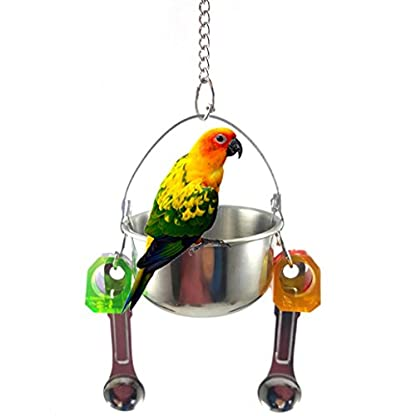 KaariFirefly Birds Parrots Stand Hanging Stainless Steel Food Cup Holder Swing with 2 Spoons - Random Color L 3