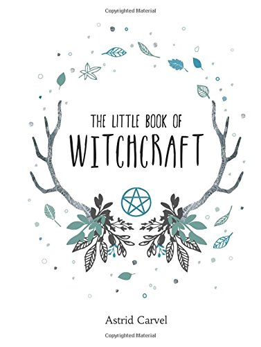 The Little Book of Witchcraft - Martin Anna