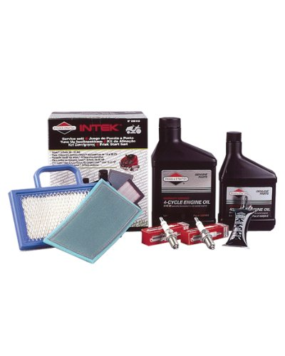 Briggs & Stratton Intek V-Twin Motor-Service-Kit. 998103