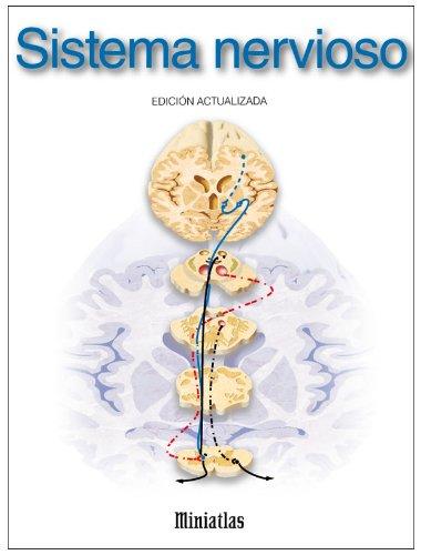 Descargar Libro Miniatlas Sistema nervioso de Luis Raul Lepori