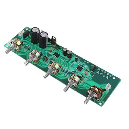 Homyl Digital Audio Verstärker Board Platine Audio Stereo Vorverstärker Brett