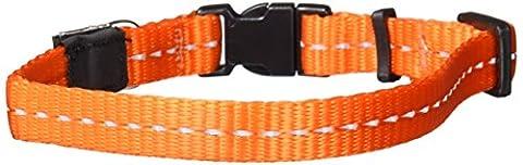 Rogz Nitelife Collar Reflective, 11 mm, Orange