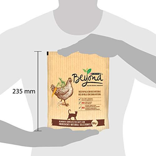 8 Sacos de 350 g Cada uno Beyond PURINA Croquetas Gato Rico en salm/ón con Cebo Integral